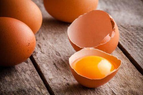 Freispruch für das Ei
