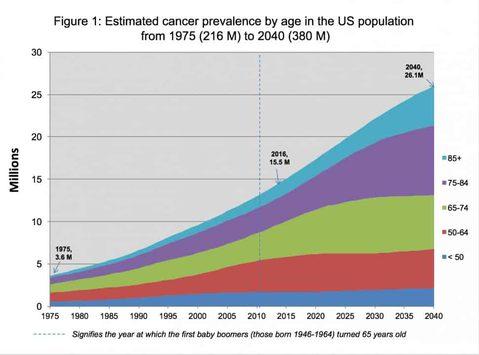Krebsprävention Immunsystem