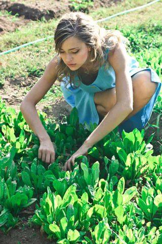 Bio online kaufen Gärtnern Kleid