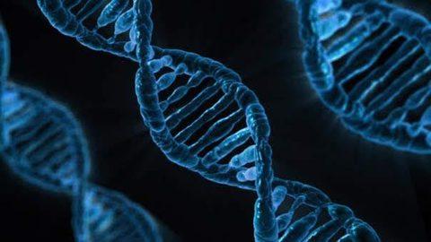 Mutationen in Krebszellen treffen nicht nur Gene