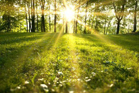 Leben ohne Reue – 5 Dinge, die Sterbende am meisten bereuen